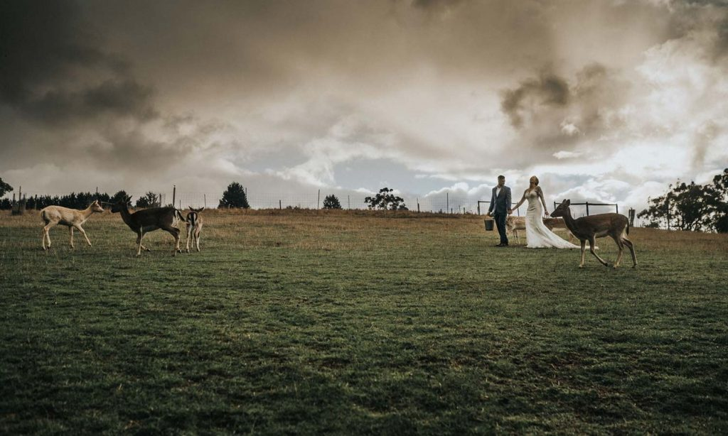 Saraid & Darryn's Melbourne Wedding 9