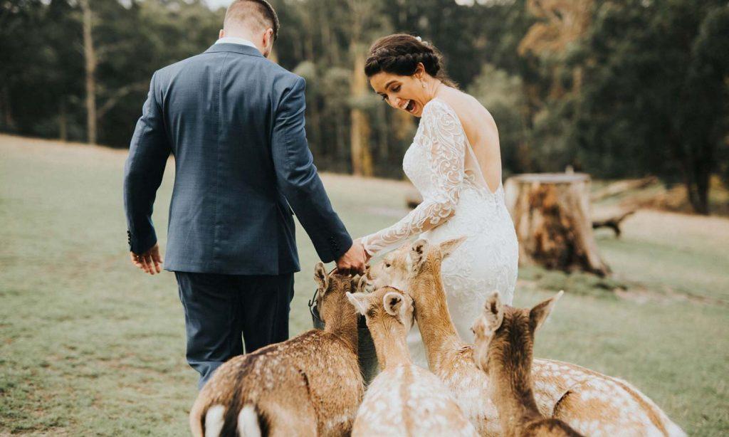 Saraid & Darryn's Melbourne Wedding 10
