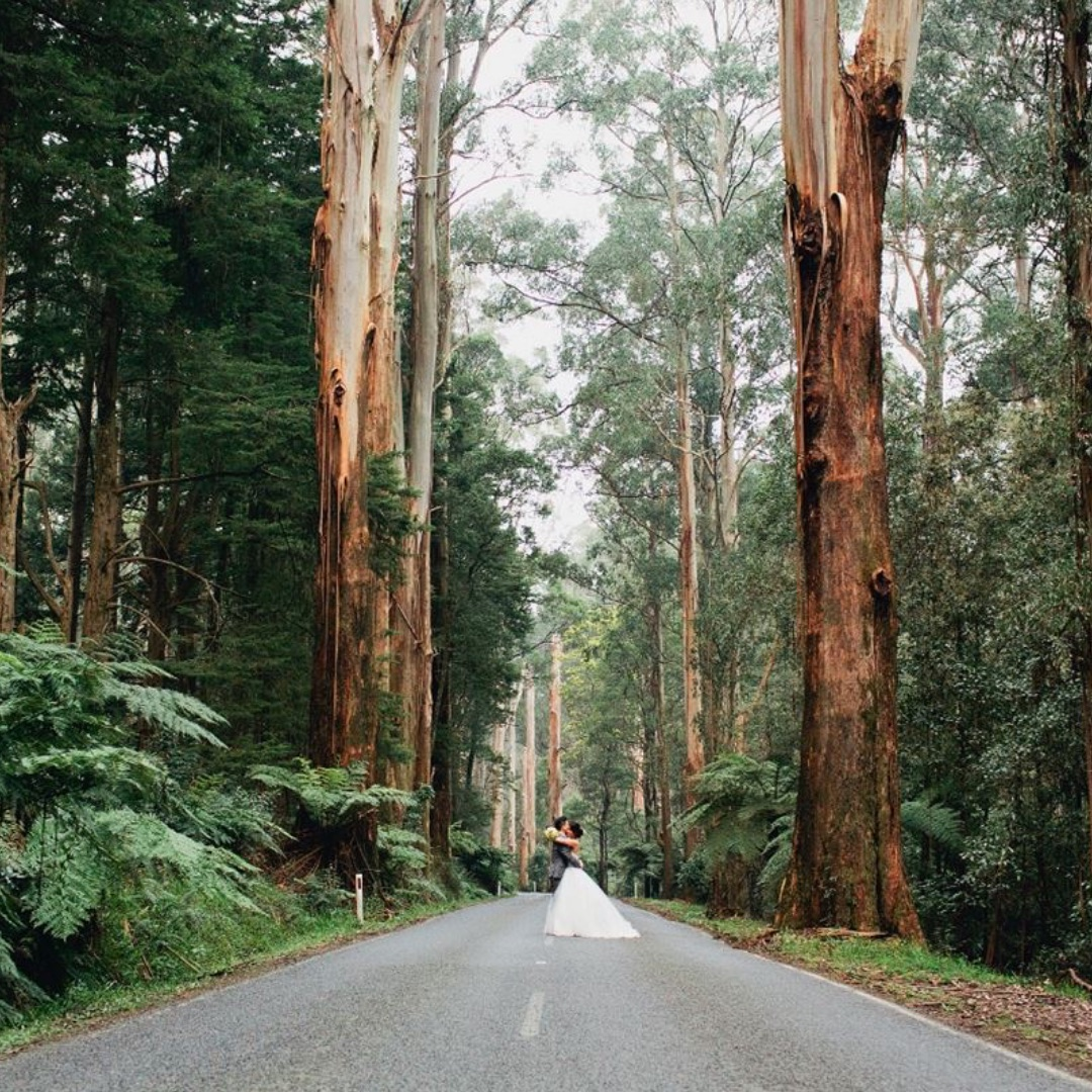 Best Dandenong Ranges Wedding Bands, Singers, DJs & Venues