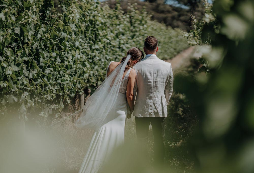 Wedding Couple in a Vineyard